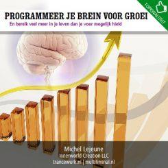 Programmeer je brein voor groei